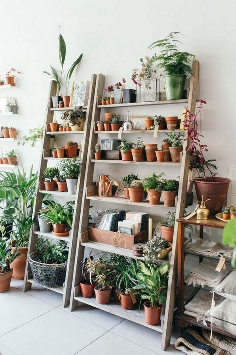 20 Indoor Garden Ideas For Your Home In Small Room In 2020 Indoor Plant Shelves Room With Plants Natural Home Decor