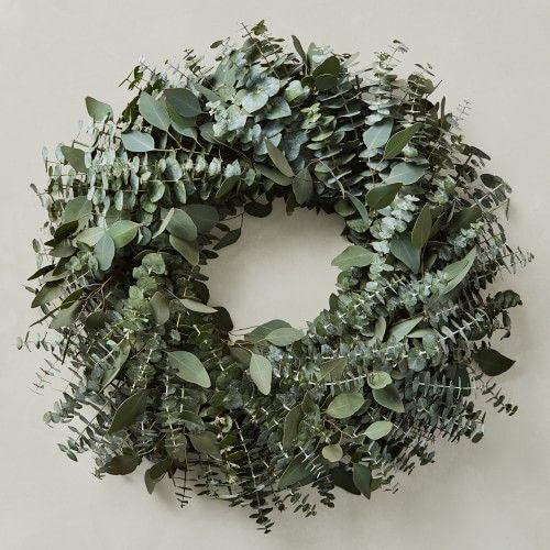 Photo of Mixed Eucalyptus Wreath, 20″ | Williams Sonoma
