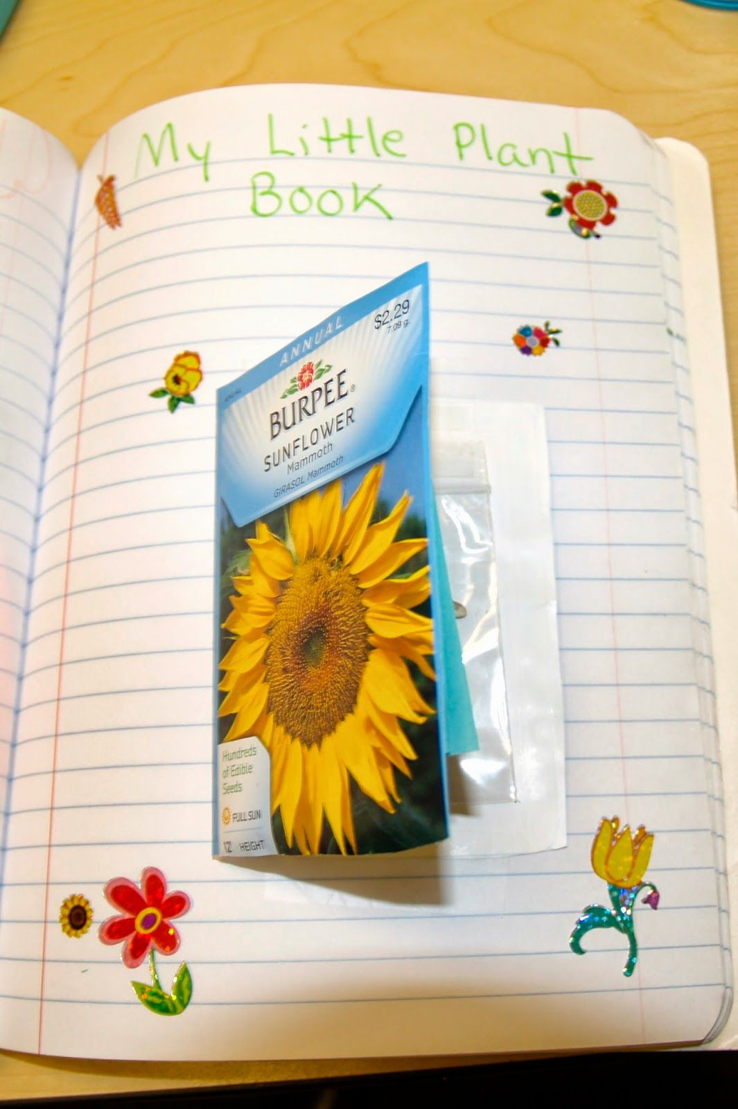 Seed Book Out Of A Seed Packet Great Idea For Interactive