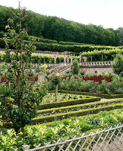 French Kitchen Garden: Château De Villandry Kitchen Garden
