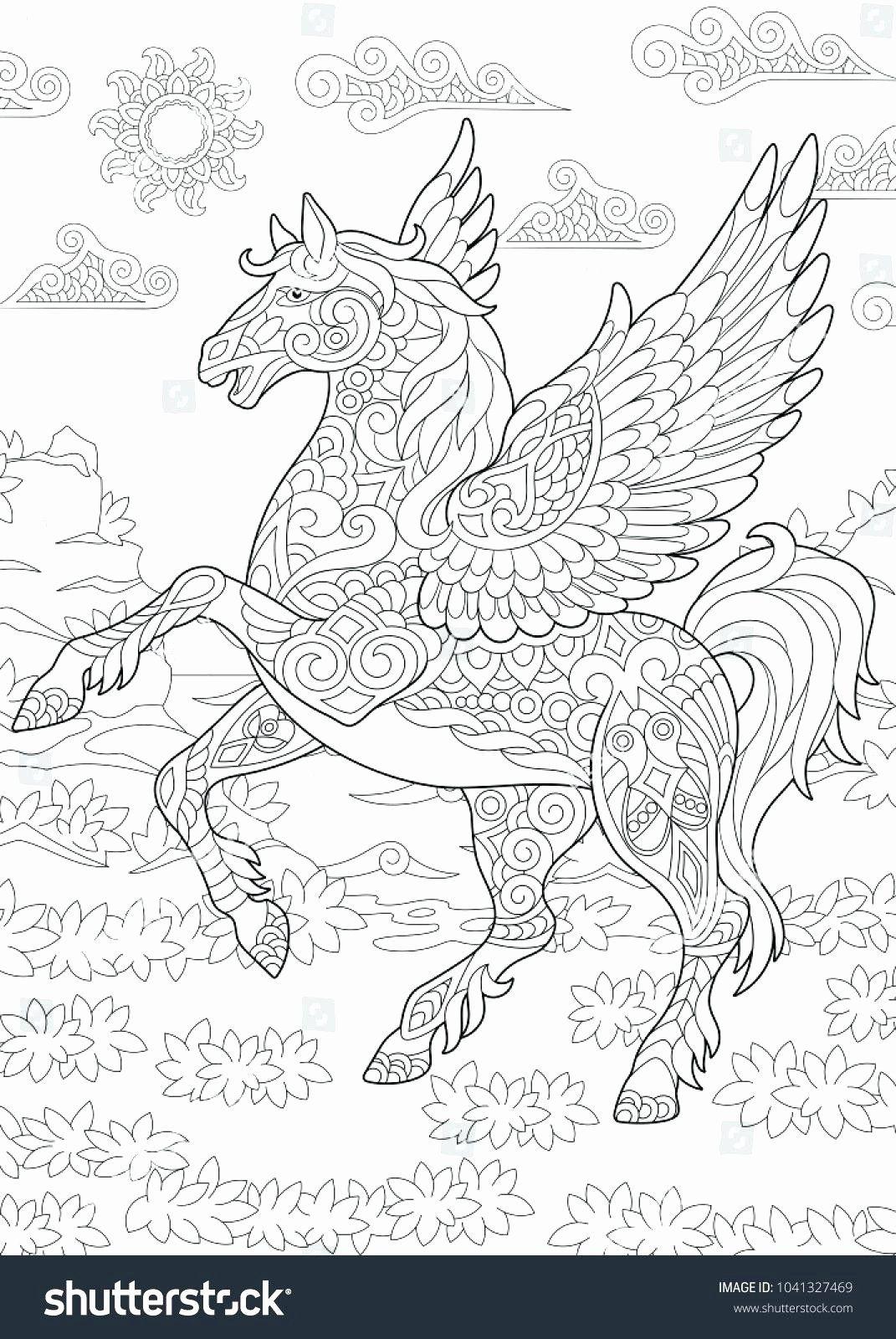Pin On Pegasus