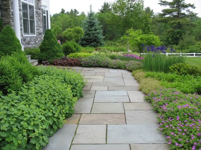stone walkway with shrubs and flowers