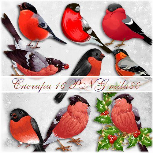 Клипарт - Снегири | Закладки своими руками, Живопись птицы ...