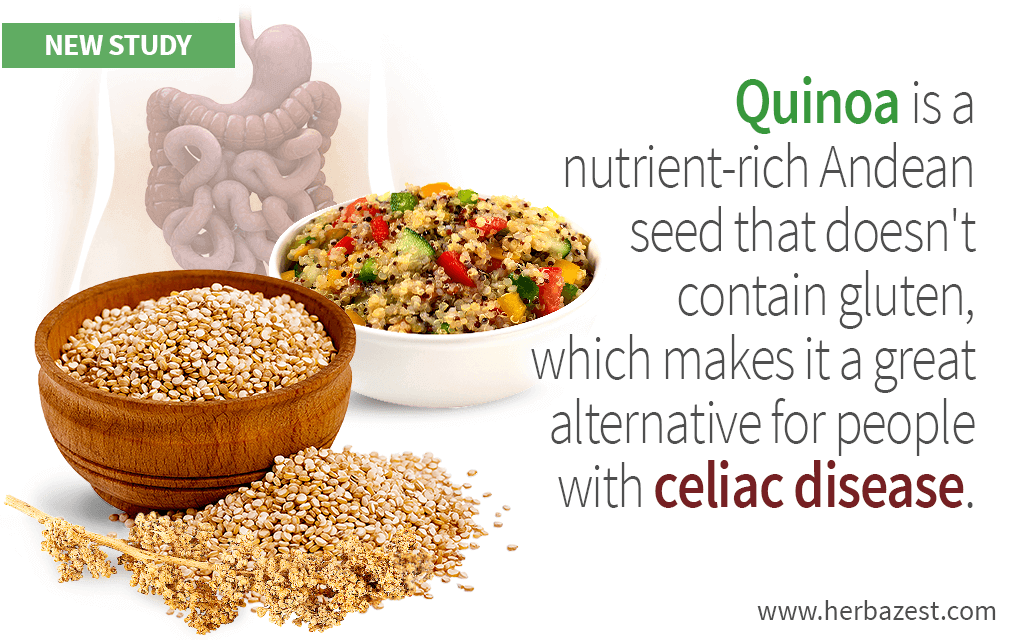 Quinoa Shown to Be Safe for Celiac Patients | Celiac, Safe ...