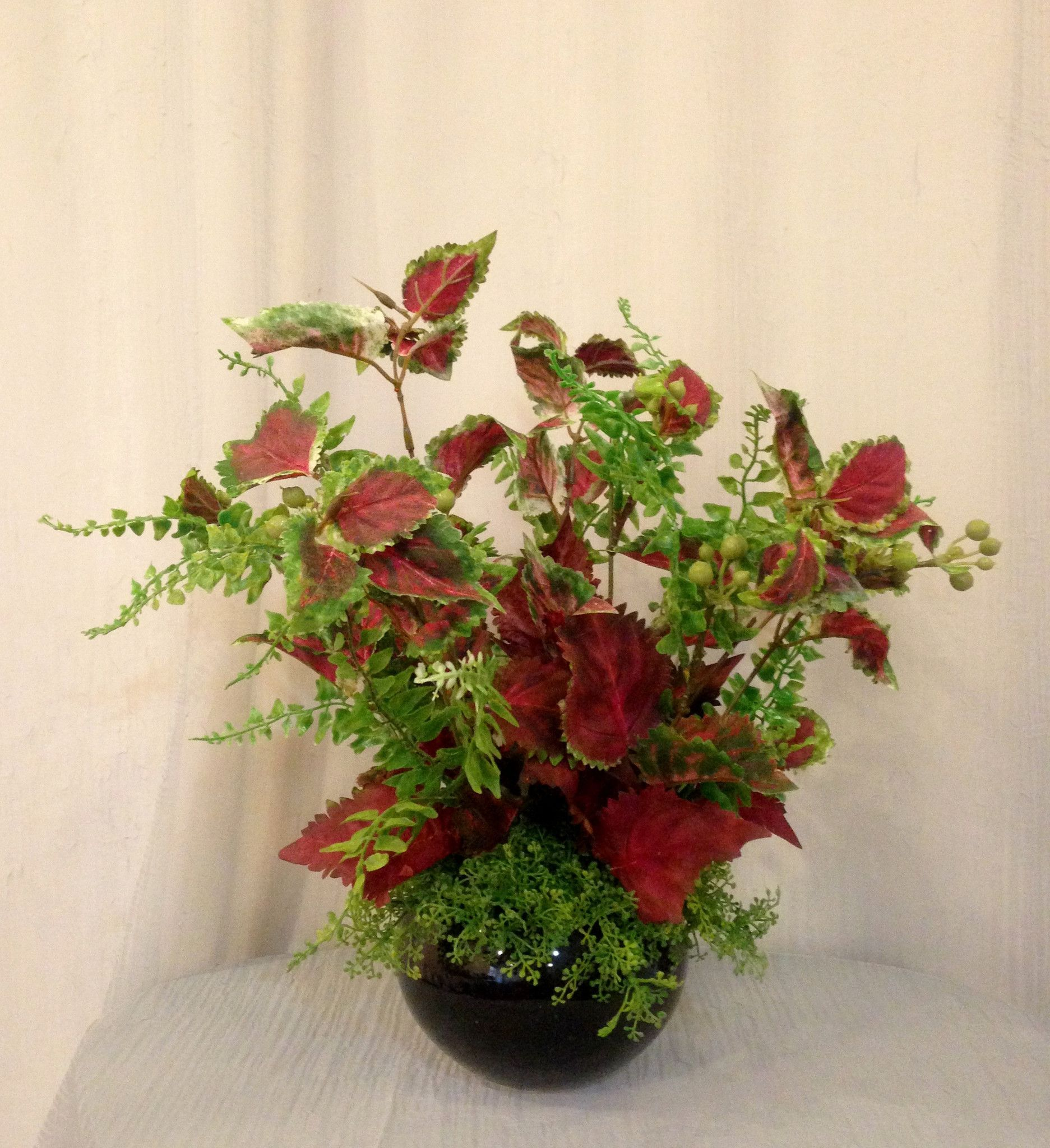 Silk Coleus And Jade Plants In Ceramic Container, Office Home