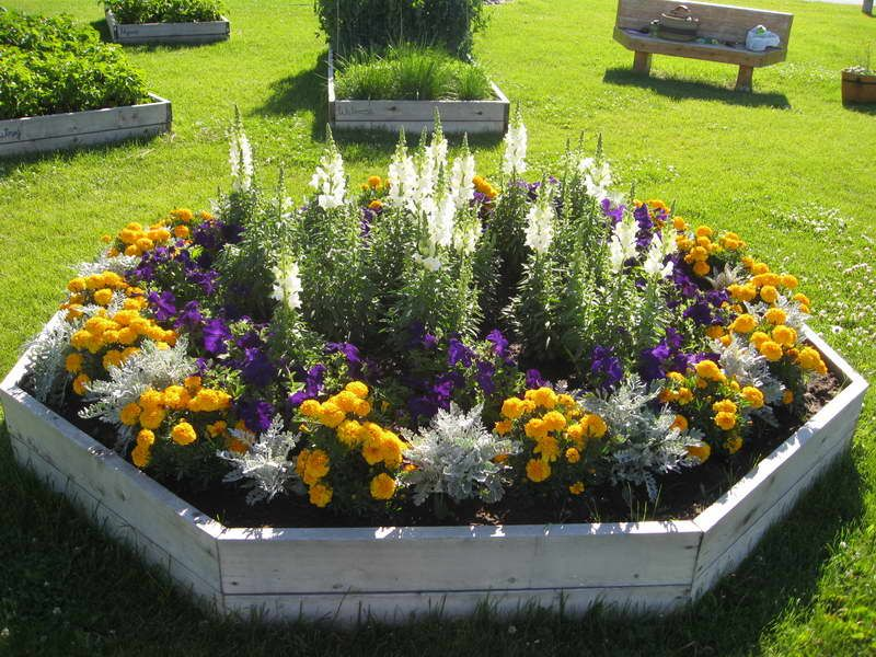Annual Flower Bed Designs With Wooden Board | Garden + Ideas ...