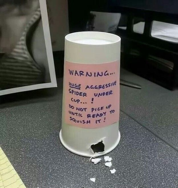 Put this cup upside down on your kid's desk.