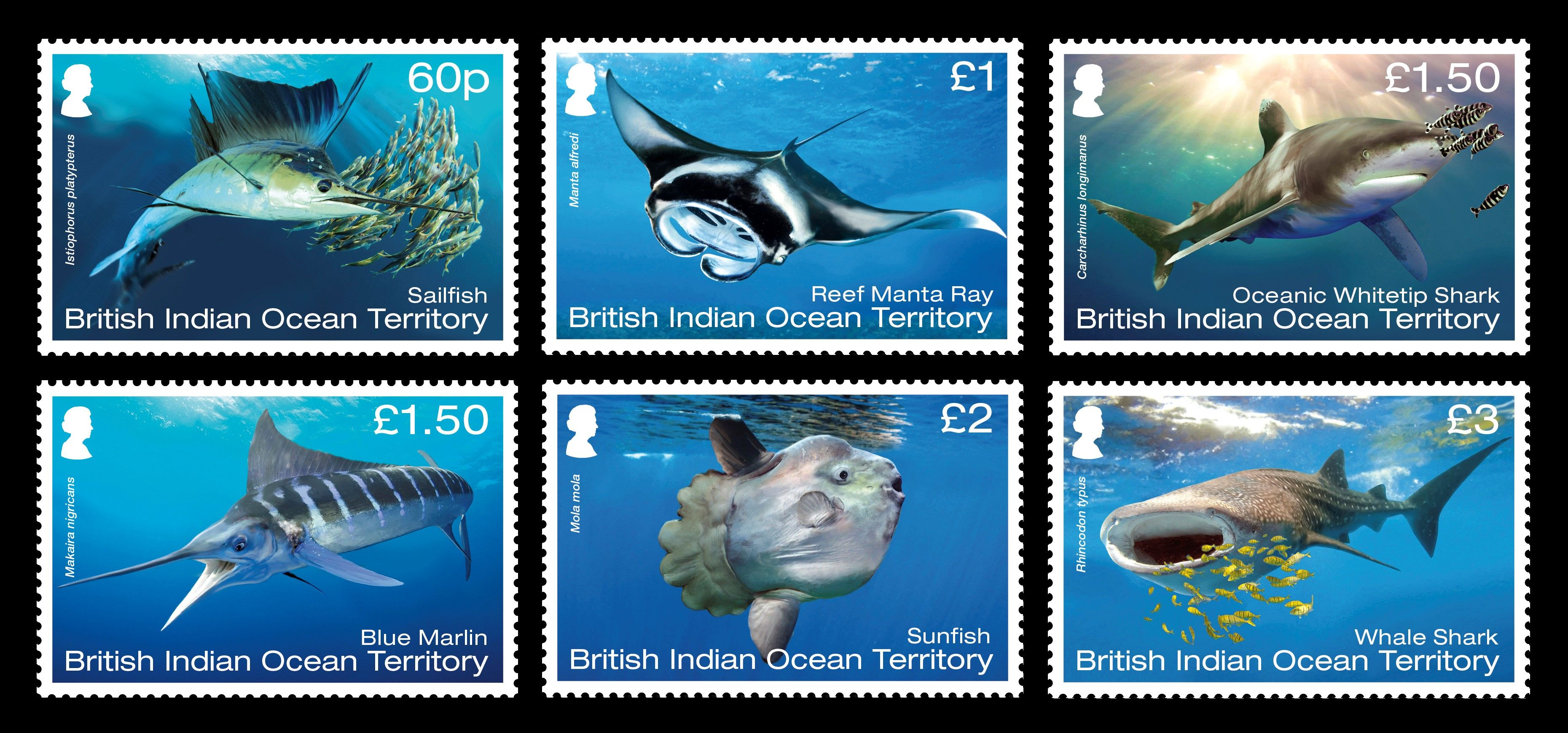 BIOT Megafauna Stamp Issue 08.06.17 Published 26 May