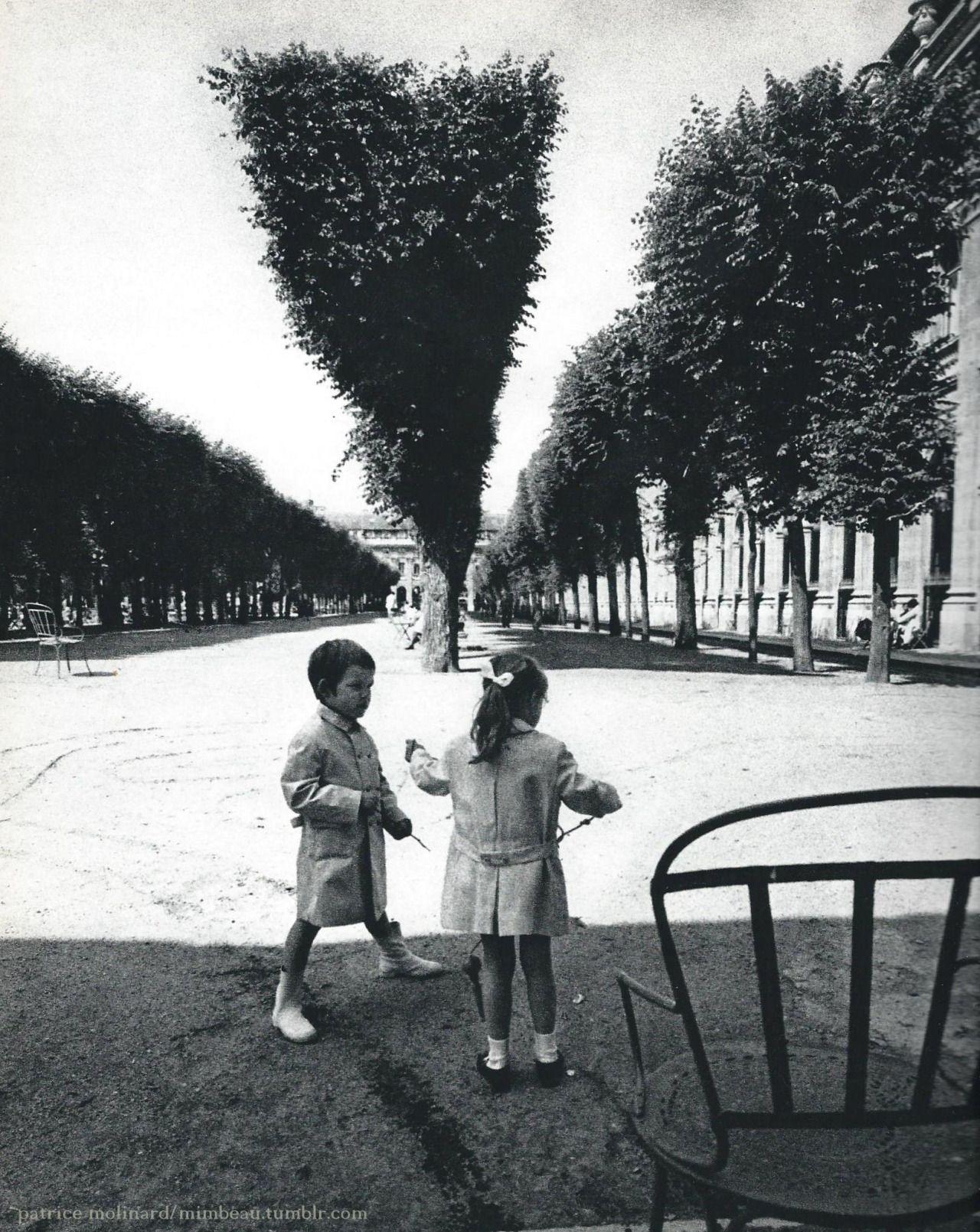 95d30b13dcbadc mimbeau: Palais Royal Gardens Paris 1960s Patrice Molinard   GARDENS ...