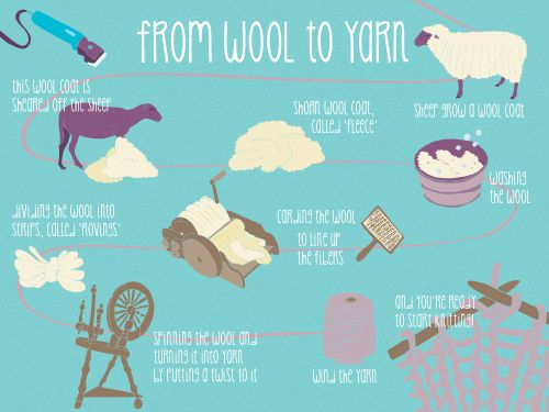 Knitting History Facts : How does the wool get from sheep into your tightly