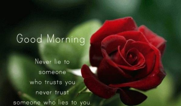 good morning my love english (With images)   Good morning