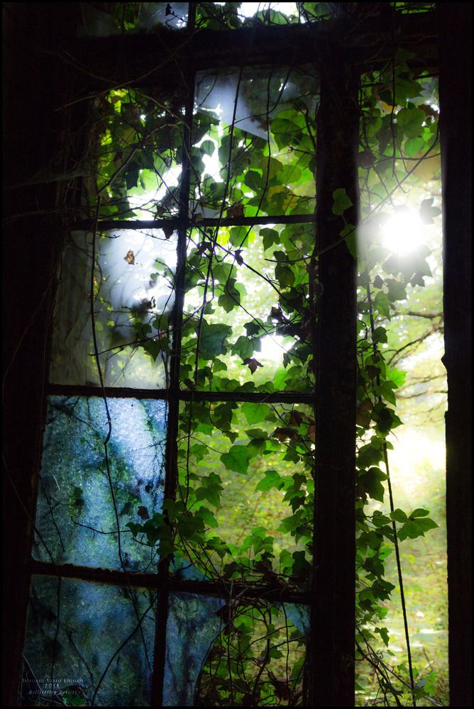 Heilstätten Beelitz 7 - 2014 http://fc-foto.de/34296035