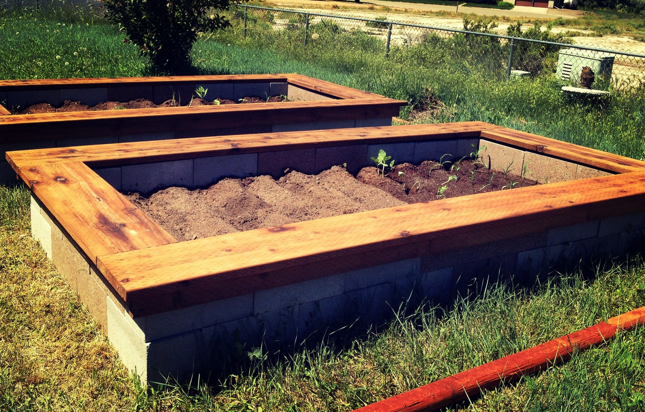 Cinder block raised bed gardens with wood trimmed bench ...