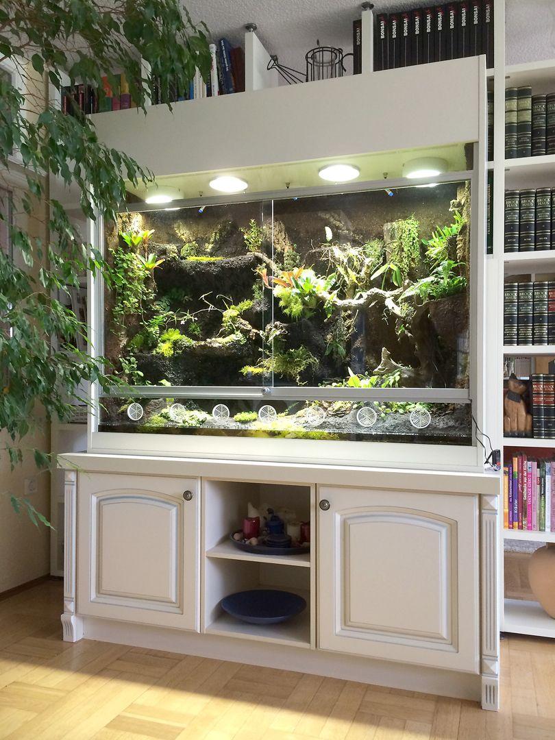 paludarium als orchideenvitrine mit wasserfall bachlauf und kleinen t mpeln paludarium. Black Bedroom Furniture Sets. Home Design Ideas