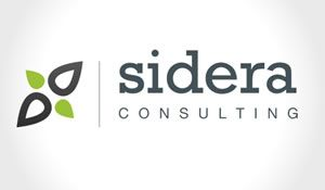 Sharp tech related logo and brand design for Consulting business