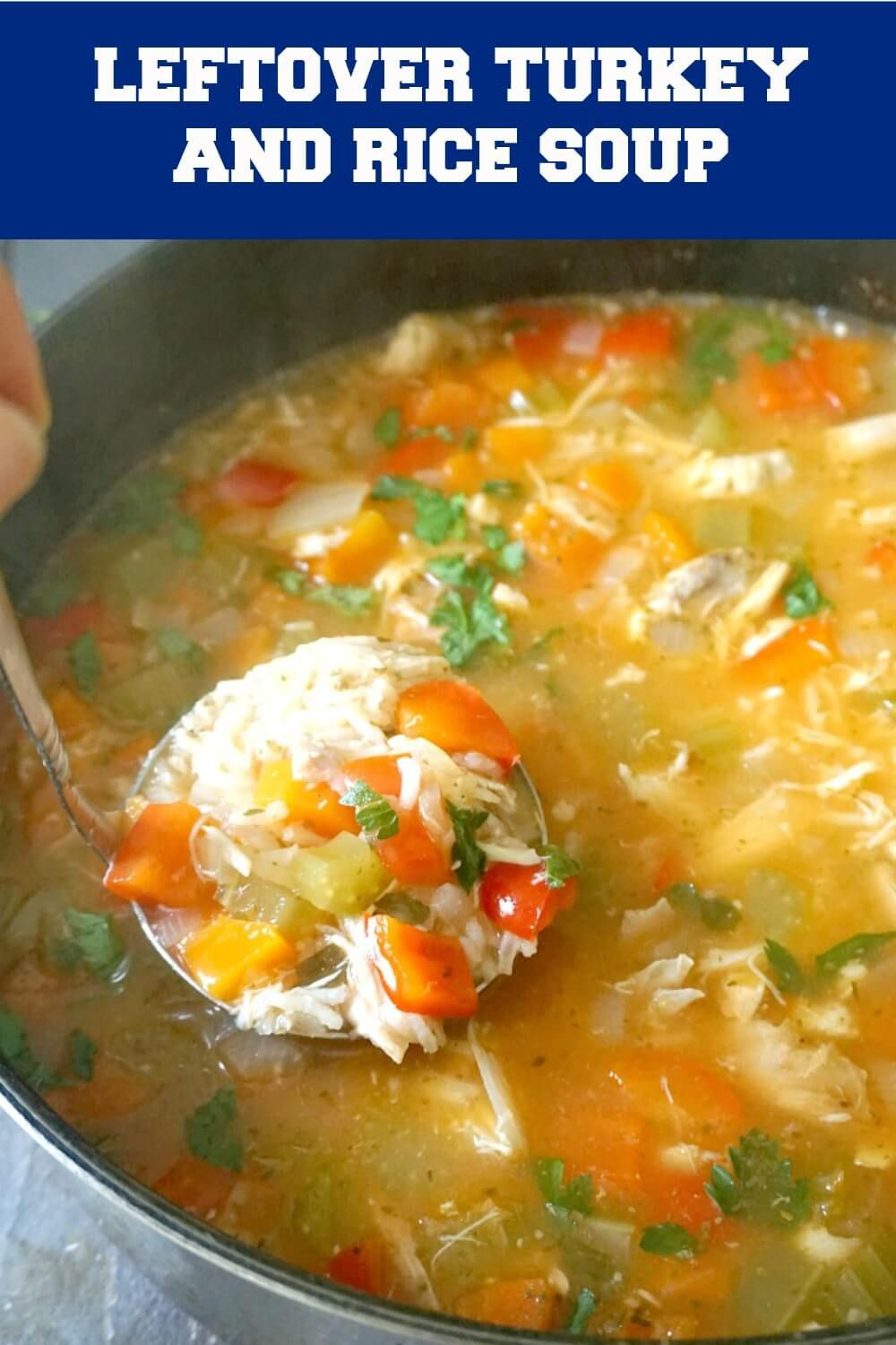 Leftover Turkey Rice Soup - My Gorgeous Recipes