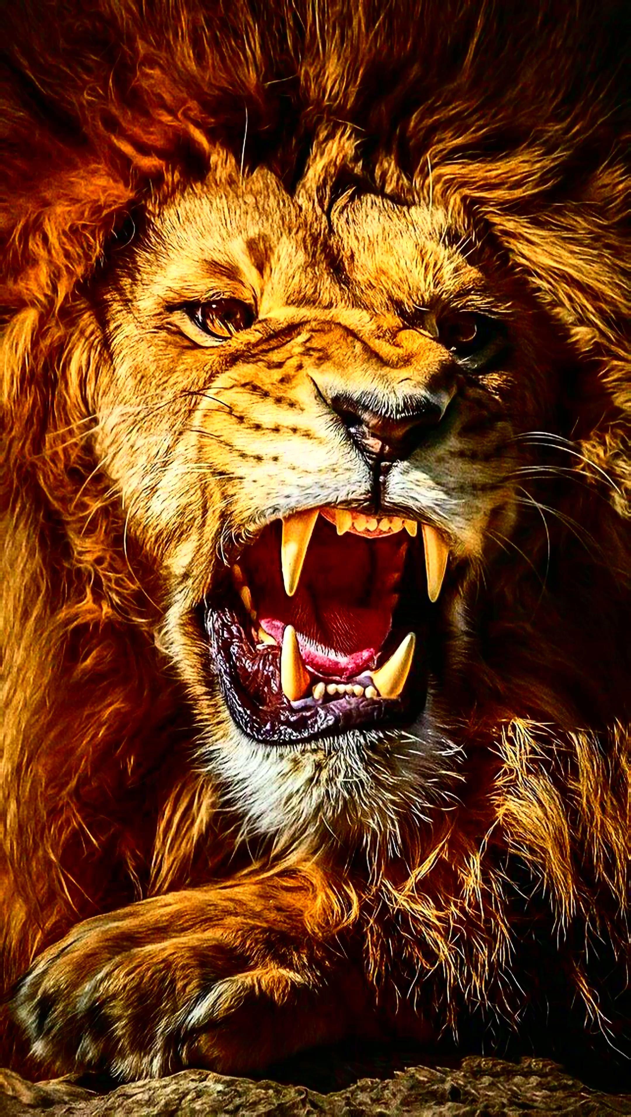 Lion - YouTube