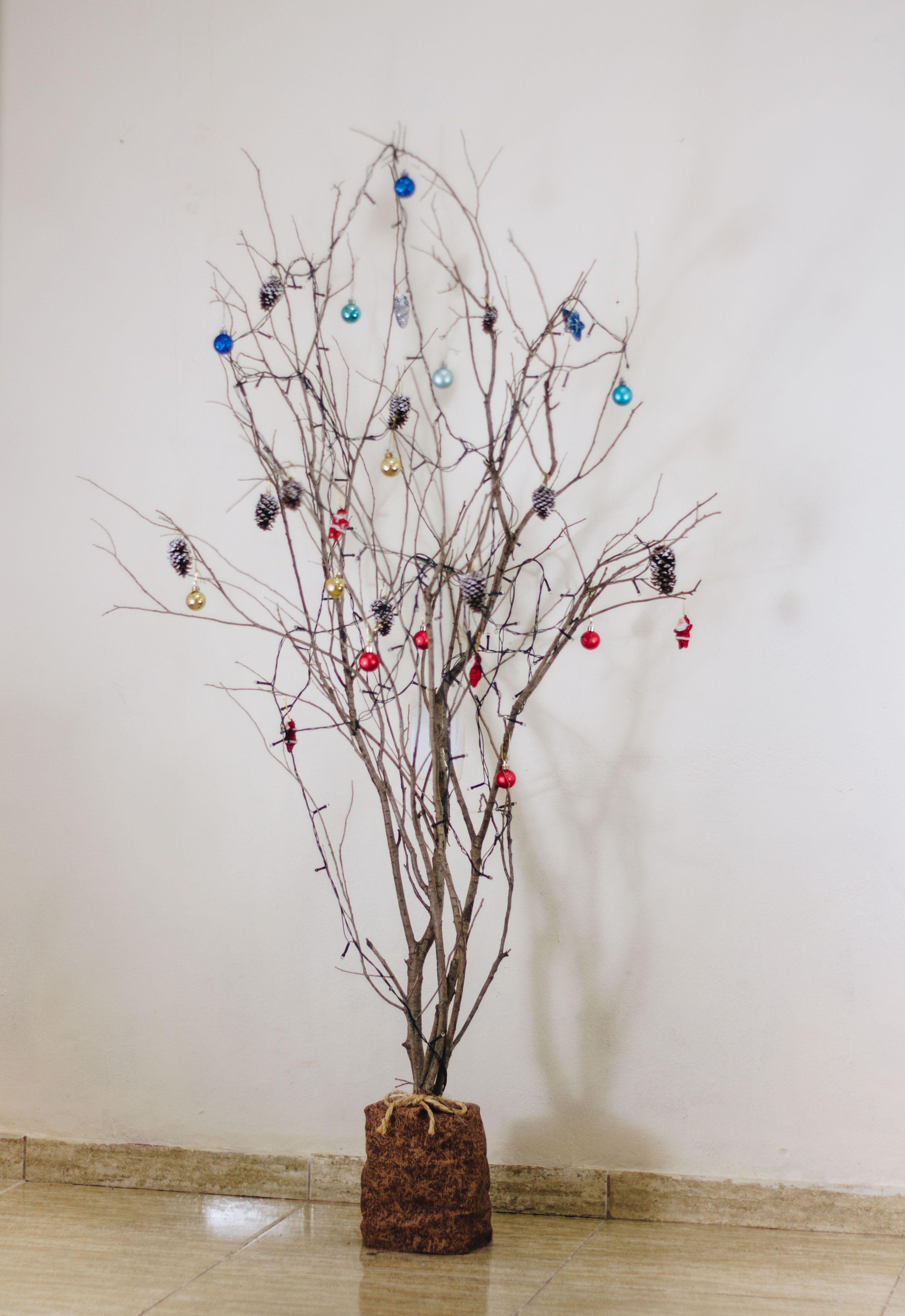 100 Arvore De Natal De Galhos De Plantas