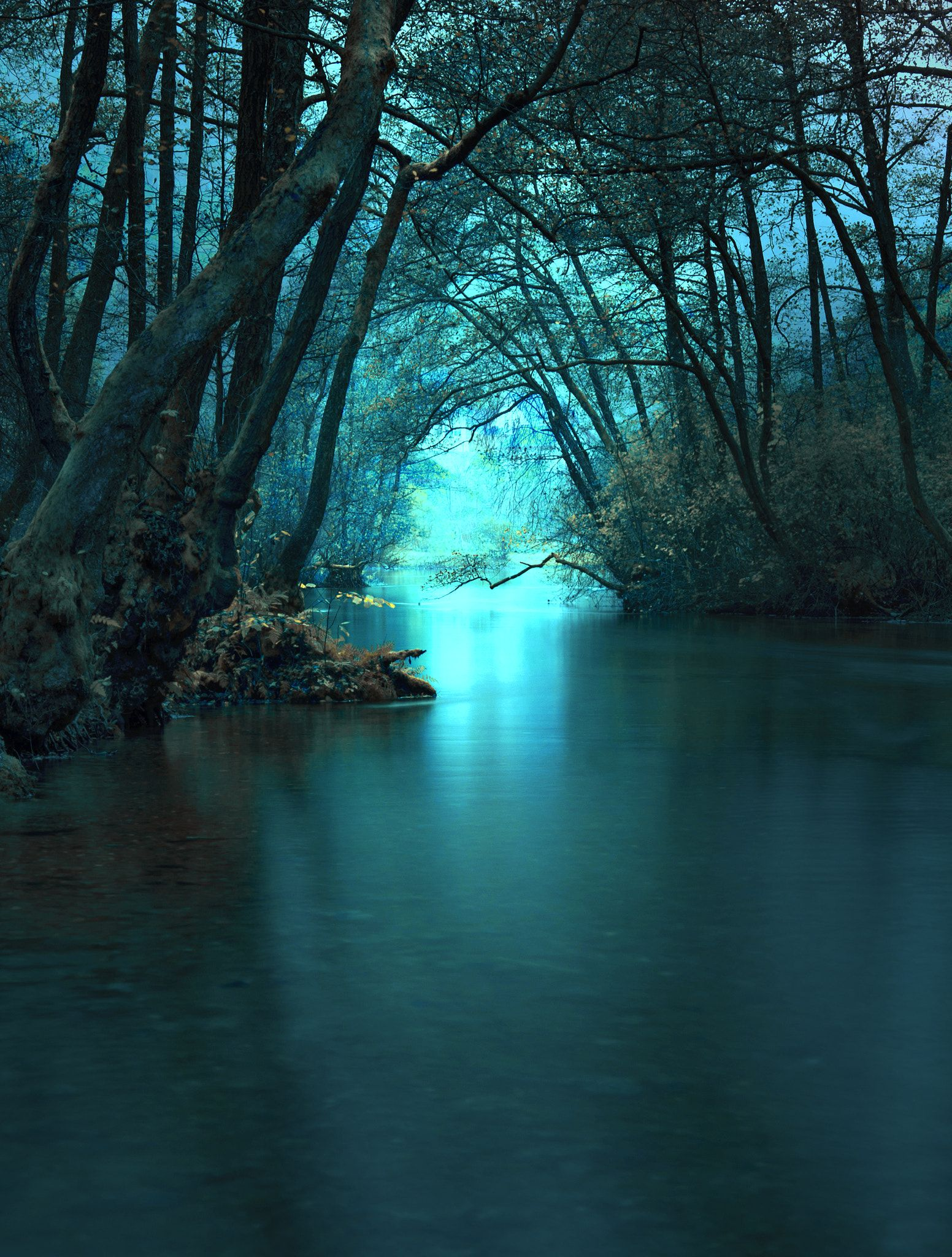 River Nature Impression 美しい風景 風景 美しい風景写真