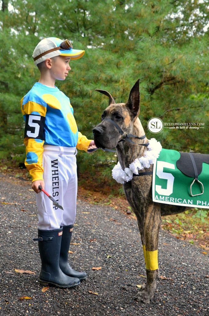 Jockey And Race Horse Costume Horse Costumes Pet Parade Jockey