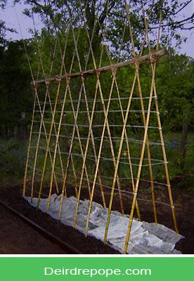 Garden Trellis Ideas For A Vegetable Garden Teepee Trellis Bamboo Garden Bamboo Trellis