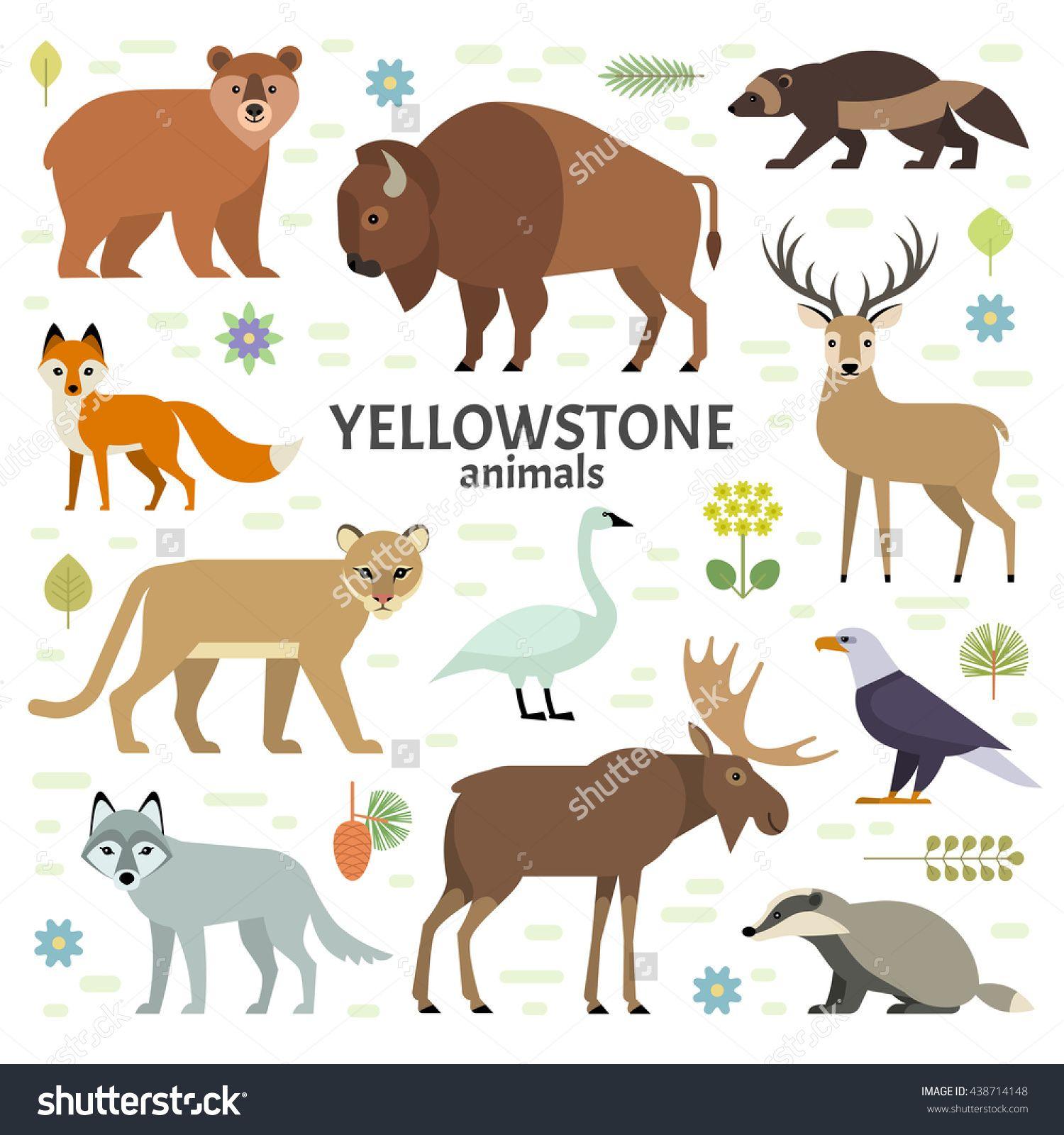 Image Result For Animals Of Yellowstone Illyustracii S Zhivotnymi Illyustracii Vektornye Illyustracii