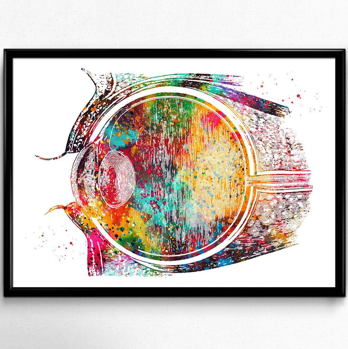 Eye, Anatomy Watercolor Print, Human Eye, Optometrist ...
