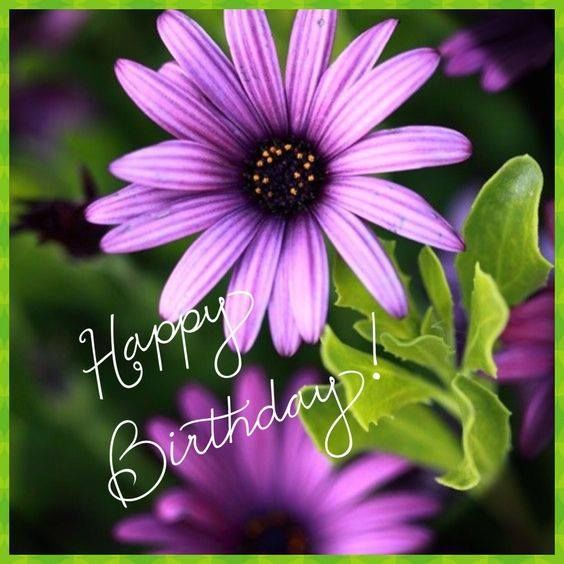 Birthday Flowers Images With Quotes: Happy Birthday Flower, Birthday