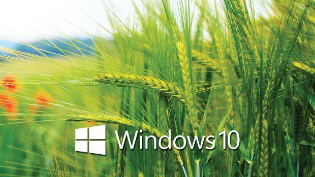 Windows 10 Transparent Wallpapers Green Nature Wallpaper Transparent Wallpaper Hd Nature Wallpapers