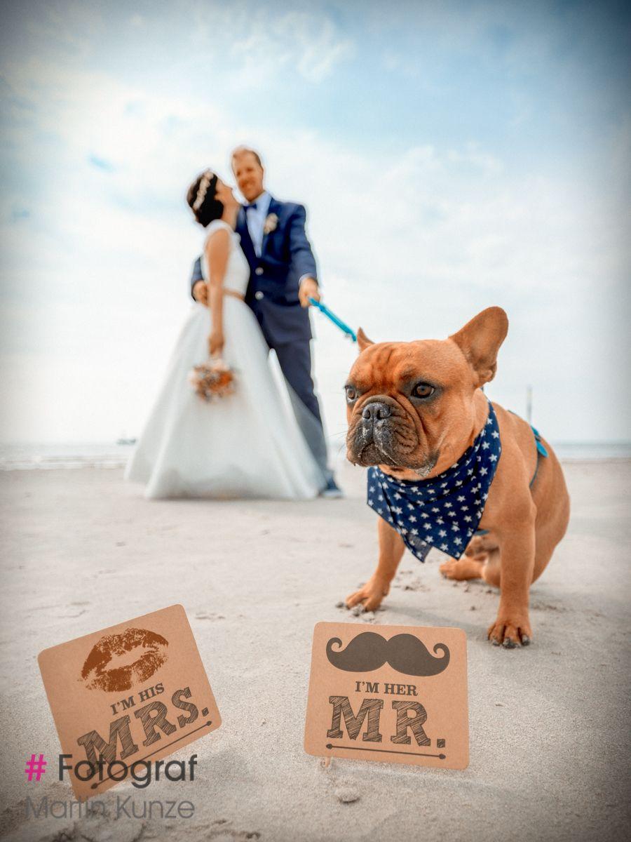 Pin Von Lena S Auf Hund In 2020 Fotoshooting Am Strand Fotoshooting St Peter Ording