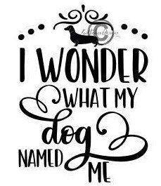 Download Dachshund Svg, I Wonder What My Dog Named Me Svg, Doxie ...