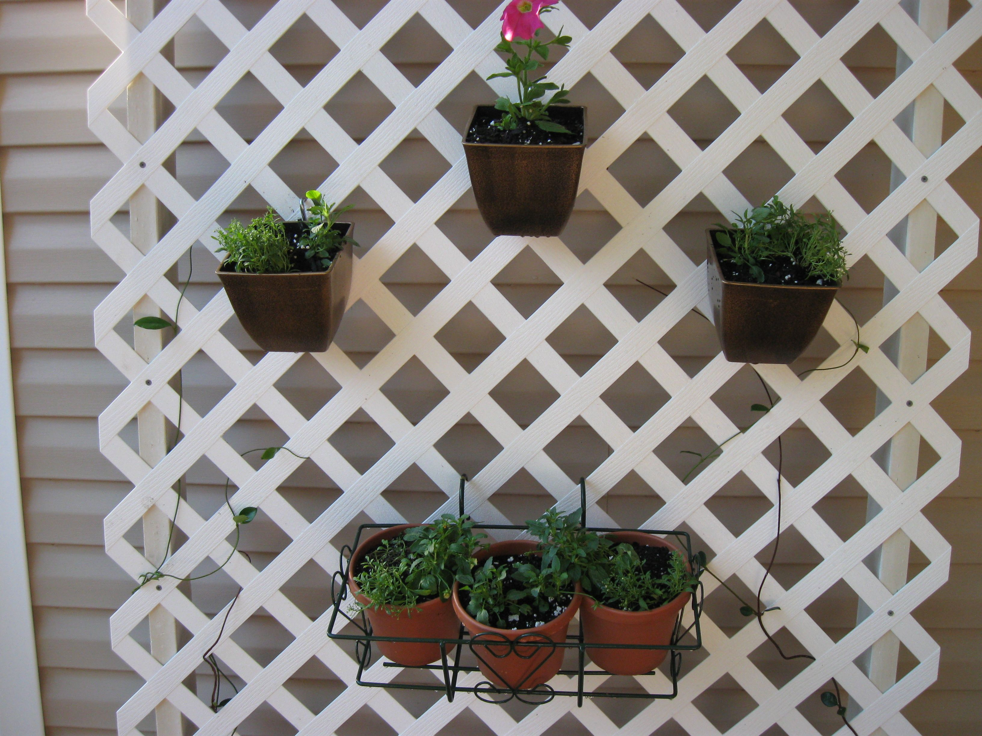 Trellis Container Gardening Provide Vertical Hanging Space For Pots, Using  S Hooks Through Drilled