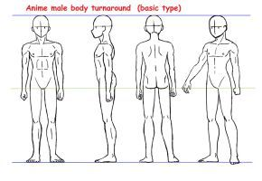 Pin On Anime Body Anatomy