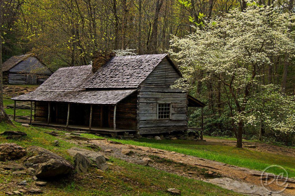 gatlinburg mountain cabins cabins in the mountains studio design gallery best affordable. Black Bedroom Furniture Sets. Home Design Ideas