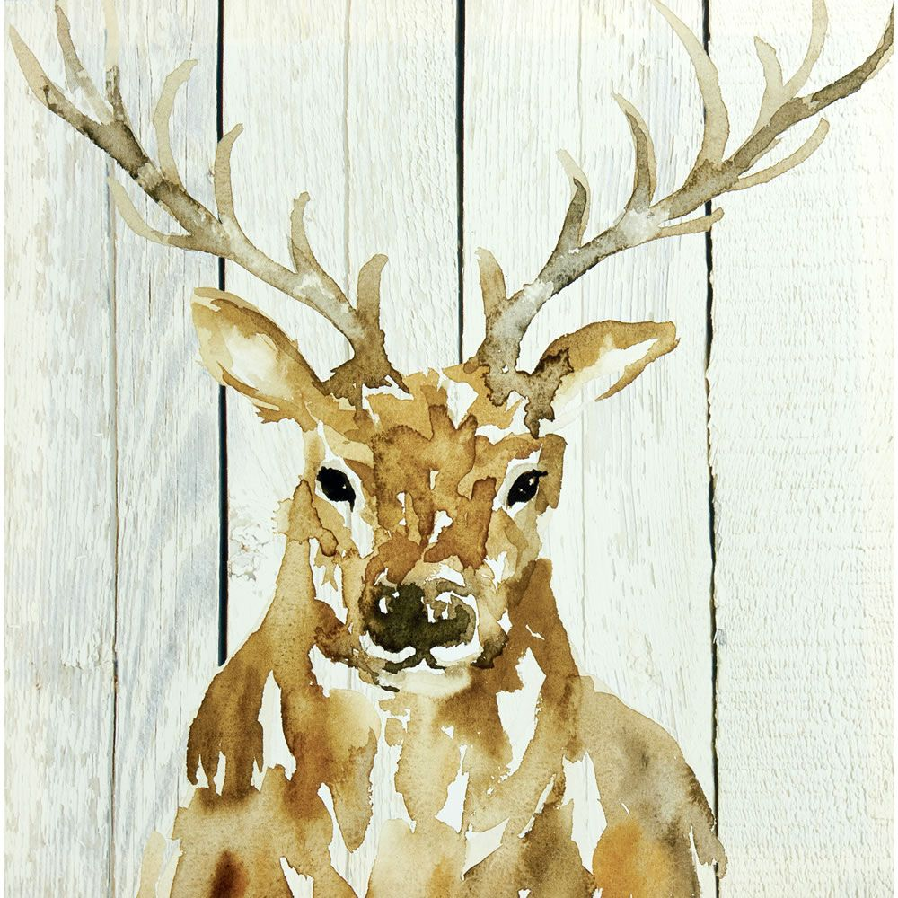 Wilko Stag Canvas 48x48cm | Shop Ideas | Pinterest | Canvases ...