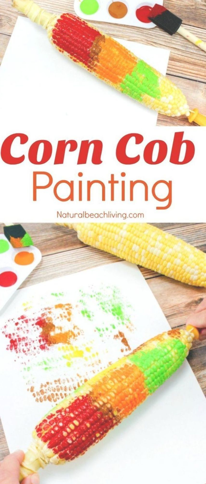 Fun Corn Cob Craft Painting for Kids, Thanksgiving Crafts, Thanksgiving Arts Crafts, Corn Cob Painting, Easy Fall Crafts for preschoolers, Farm Preschool Theme activities, Easy Thanksgiving Crafts Kids Love #Thanksgiving #Crafts #Fallcrafts #fallcraftsfortoddlers Fun Corn Cob Craft Painting for Kids, Thanksgiving Crafts, Thanksgiving Arts Crafts, Corn Cob Painting, Easy Fall Crafts for preschoolers, Farm Preschool Theme activities, Easy Thanksgiving Crafts Kids Love #Thanksgiving #Crafts #Fallcr #thanksgivingcraftsfortoddlers