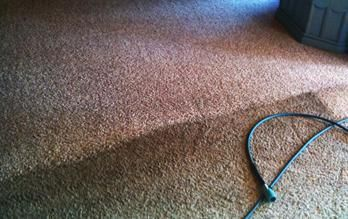 Specialties: Tiles, Carpets, Area Rugs, Upholstery, Hardwood Floor, Blood Stains, Coffee & Tea Stains,Grease Stains,Gum Removal,Ink Stains,Leather & Suede,Pet Odors,Pet Stains,Urine Stains,Urine Odors #gumremoval Specialties: Tiles, Carpets, Area Rugs, Upholstery, Hardwood Floor, Blood Stains, Coffee & Tea Stains,Grease Stains,Gum Removal,Ink Stains,Leather & Suede,Pet Odors,Pet Stains,Urine Stains,Urine Odors #gumremoval Specialties: Tiles, Carpets, Area Rugs, Upholstery, Hardwood Floor, Blood #gumremoval