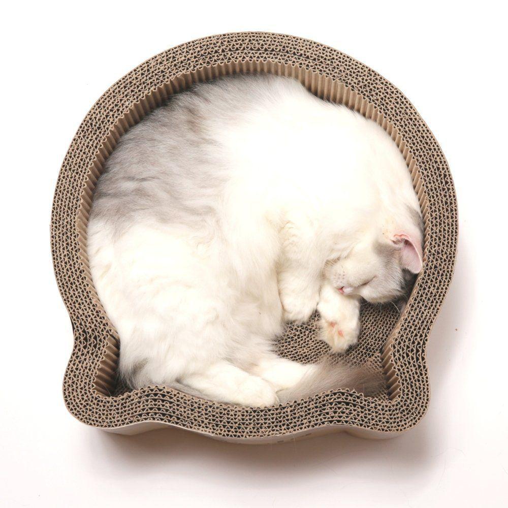 Amazon Com Cat1st Cat Headed Round Cardboard Scratcher Cuddler Bed Birch Pet Supplies Kittens Cutest Cats And Kittens Kitten Love