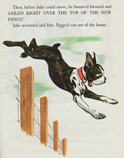 Old children's book with a Julie and a Boston Terrier. How perfect :)