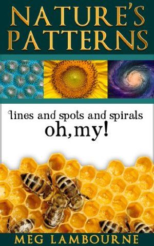 15 November 2014 : Nature's Patterns - Nature Photo Essay (Nature Book for Children and Adults) by Meg Lambourne http://www.dailyfreebooks.com/bookinfo.php?book=aHR0cDovL3d3dy5hbWF6b24uY29tL2dwL3Byb2R1Y3QvQjAwRTM0RVVaQS8/dGFnPWRhaWx5ZmItMjA=