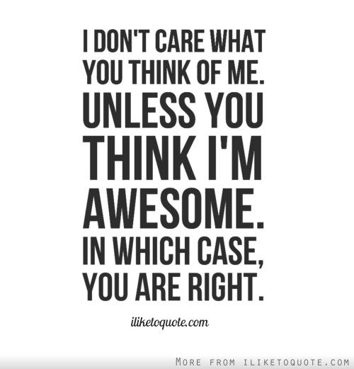I Don T Care What You Think Of Me Unless You Think I M Awesome In Which Case You Are Right Funny Quotes Inspirational Quotes Motivation Quotes