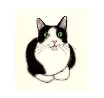 Tuxedo Cat Art Green Eyes 4 X 6 Black And White Cat Print 4 For 3 Sale By Matouenpeluche On Etsy Https Www Et Cat Art Cat Eyes Drawing Tuxedo Cat Art