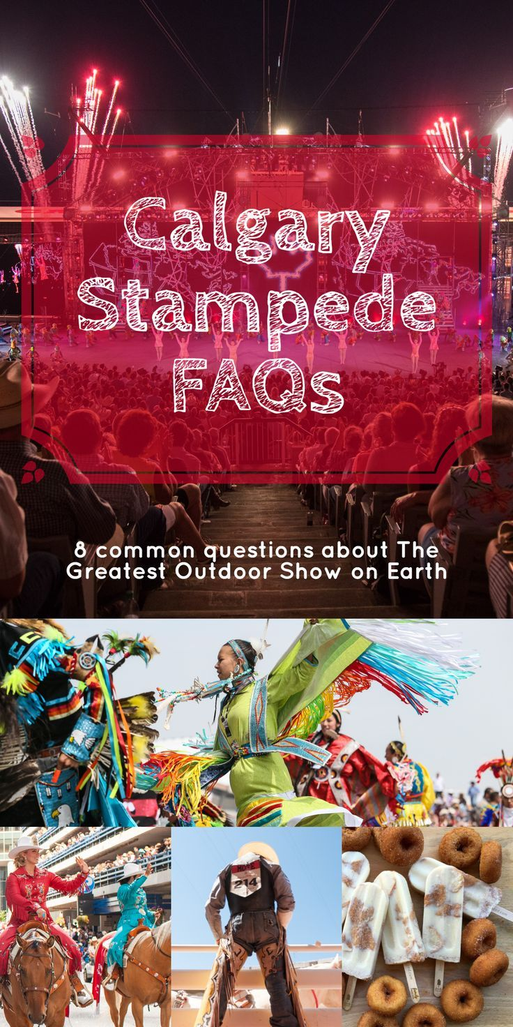 Common Questions About the Calgary Stampede Whether you are a veteran or this really is your first
