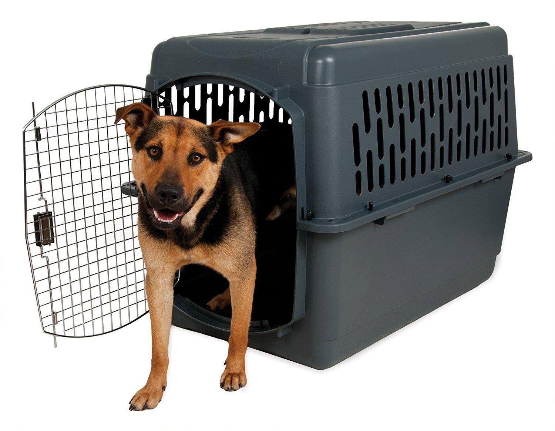 Aspenpet Pet Porter Kennel, For Pets >> You can get