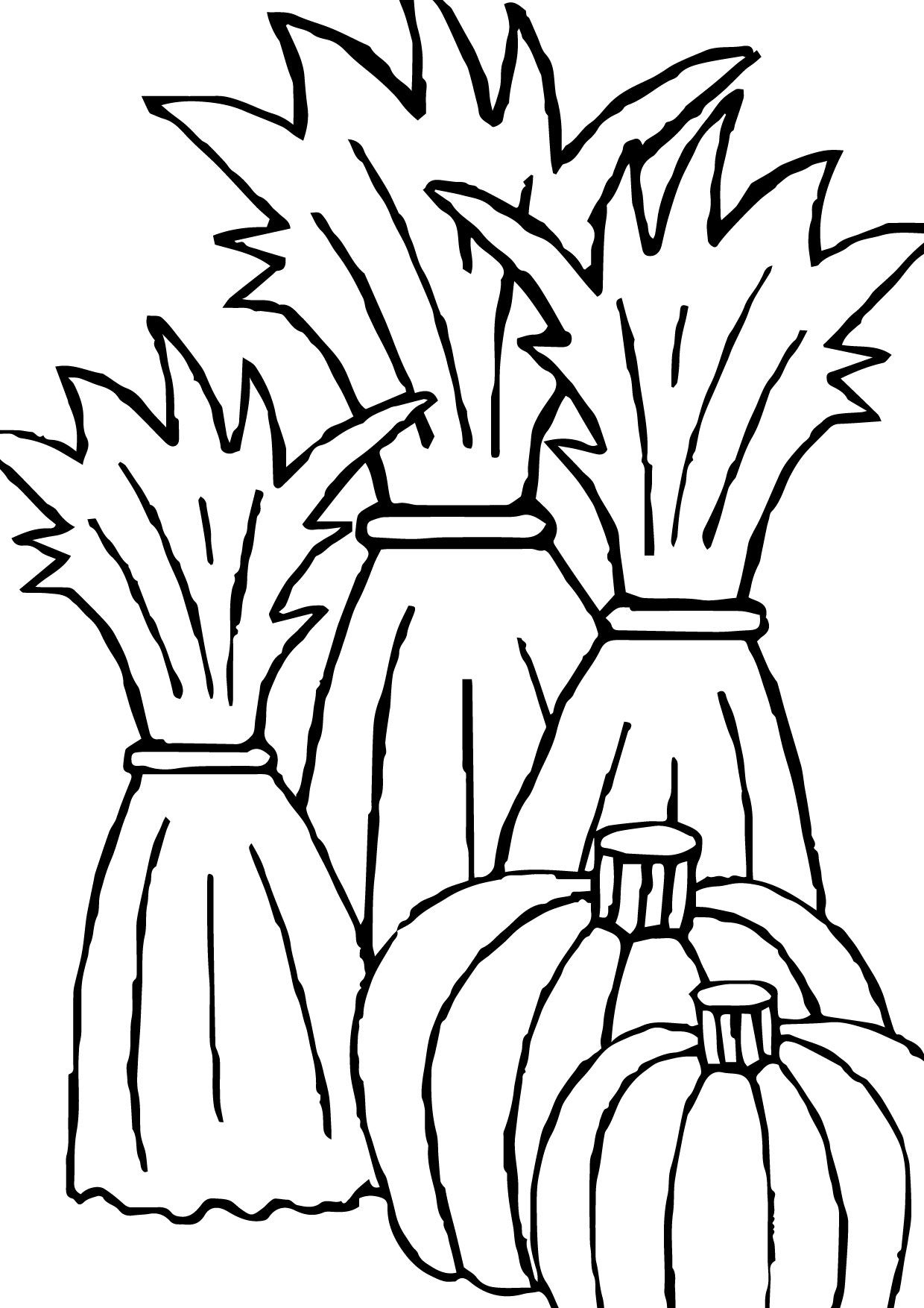 Corn Stalk Coloring Page Fall Coloring Pages Thanksgiving