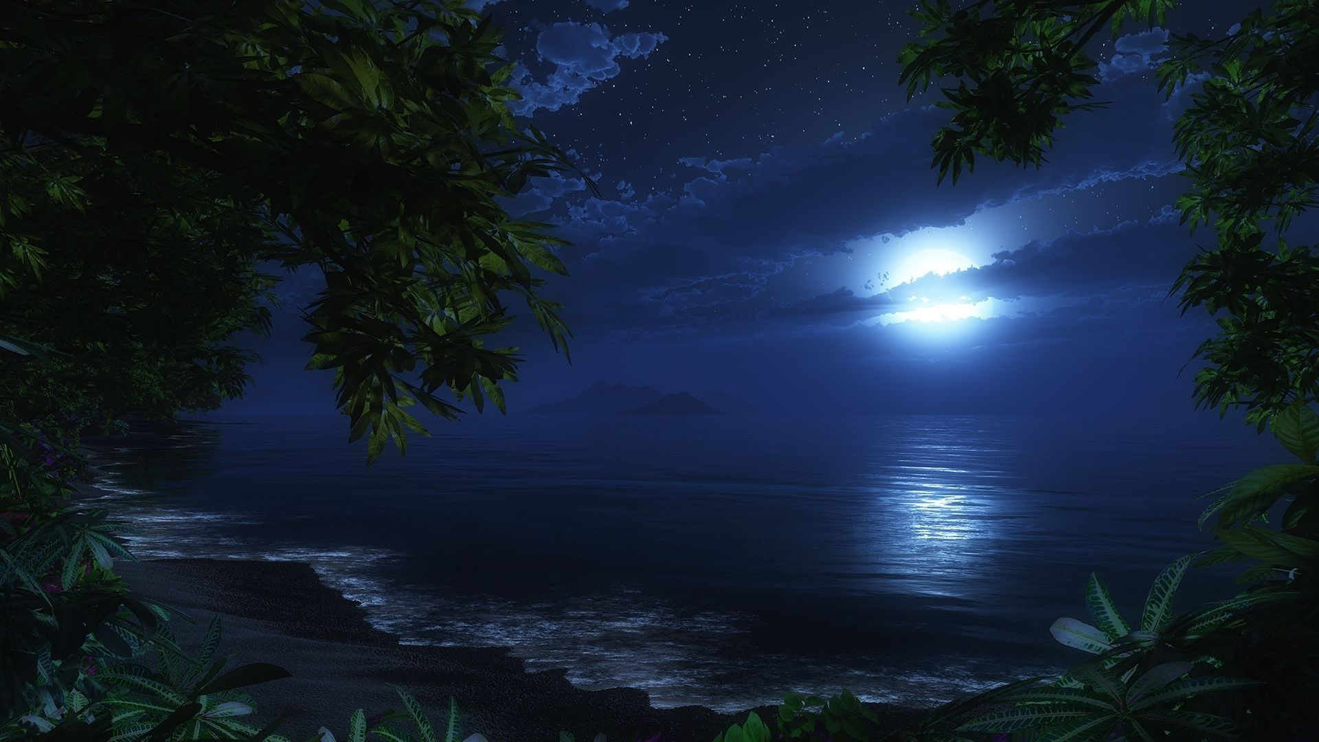 nature ocean beaches waves sky night trees tropical jungle ...
