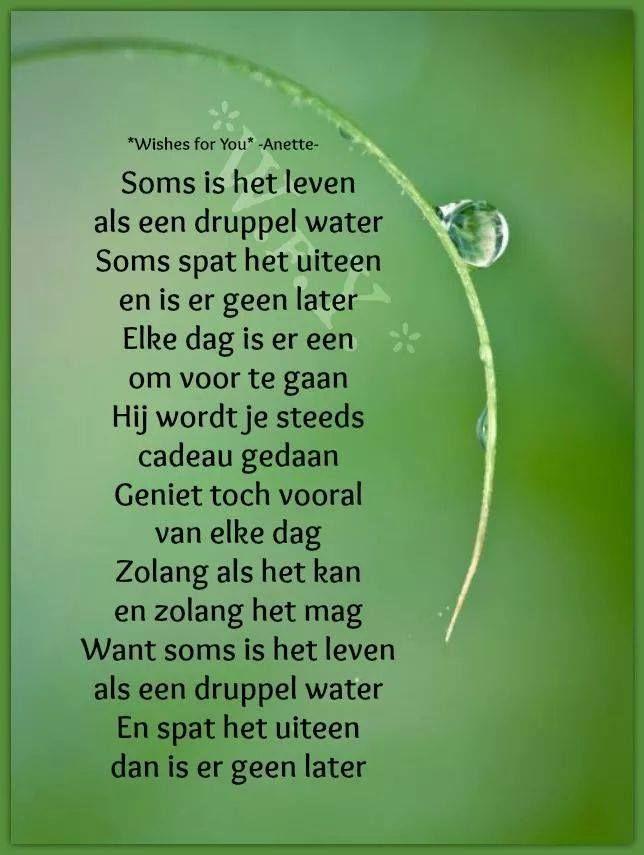 hoopvolle spreuken Pin van Wieberta Trof op Hoopvolle spreuken voor lastige tijden  hoopvolle spreuken