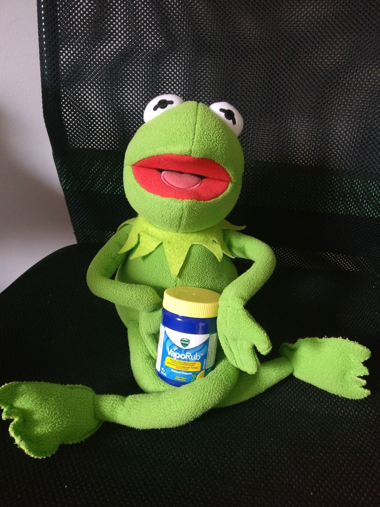 Here To Bring You Your Daily Kermits Resim