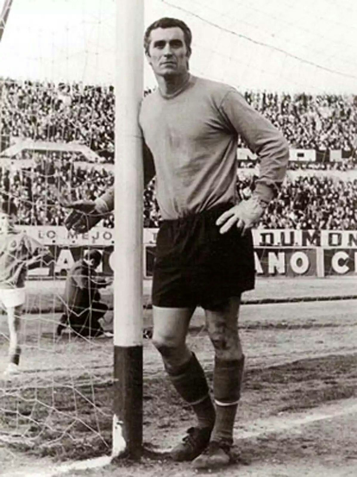 Image result for Argentina's Amadeo Carrizo