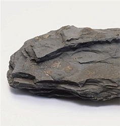Shale is a fine-grained sedimentary rock that forms from ...